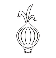Outline onion vegetable nutrition sprout icon vector