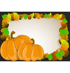 Pumpkins with leaves vector
