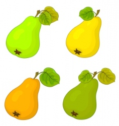 Fruit pears vector