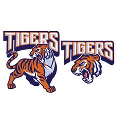 angry tiger mascot vector image vector image