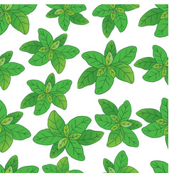 Basilic pattern 3 vector