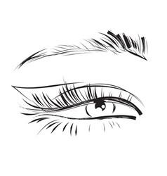Female eye drawing long eyelashes vector