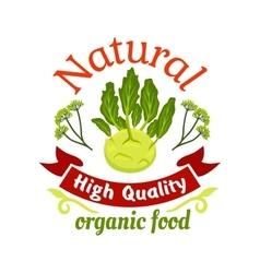 Natural organic food kohlrabi icon vector image