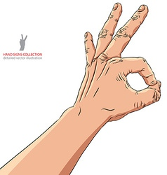 Okay hand sign detailed vector image