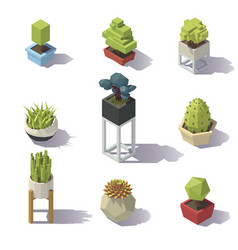 isometric low poly plants vector image