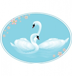 swan lake vector image