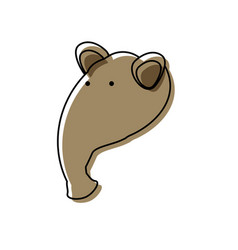 Cartoon anteater icon vector