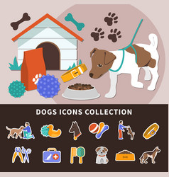 dogs icon set background vector image vector image