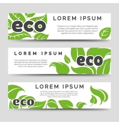 Eco banners template with green leaves vector image vector image
