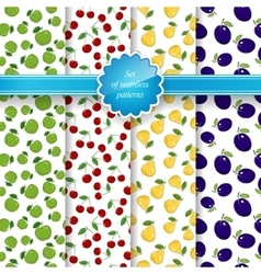 Seamless Pattern with Fruit Background vector image