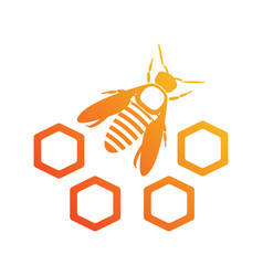 bee icon with honeycomb logotype isolated vector image