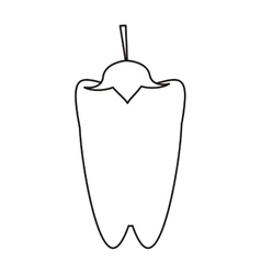 Outline pepper vegetable food icon vector