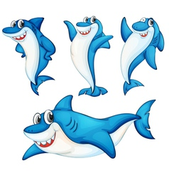 Shark series vector image vector image