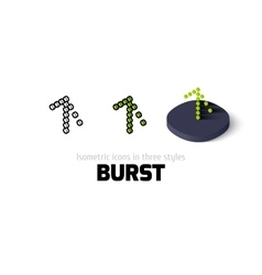 Burst icon in different style vector