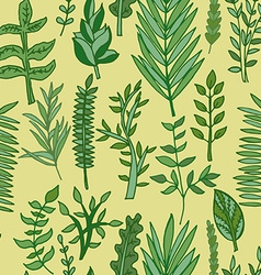 herbal pattern hand drawn vector image