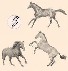 running horses vector image vector image