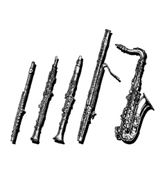 Woodwind musical instruments set vector