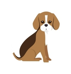 Beagle breed dog cartoon vector