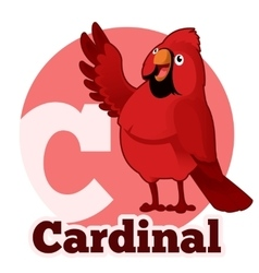 Abc cartoon cardinal vector