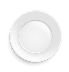 Classic plate vector image vector image