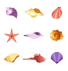 Colorful shells icon set vector
