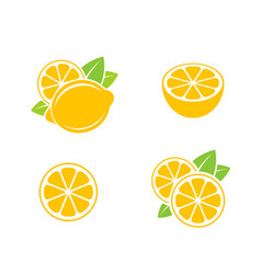 Lemon citrus fruit on white background vector