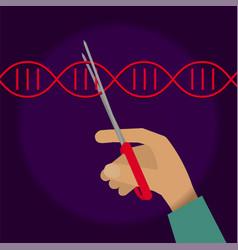 Manual genetic engineering vector