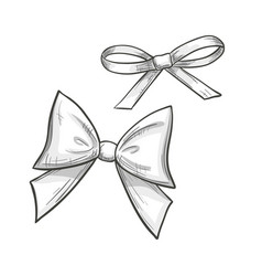 Sketch bows on a white background vector