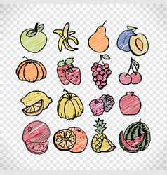 Fruit set in bright color vector