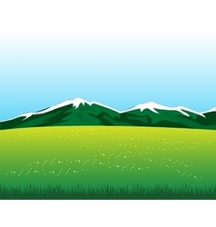 Glade with flower in mountain vector