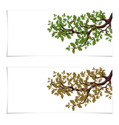 green and autumn a yellowed branch of a large oak vector image
