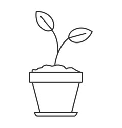 Monochrome silhouette of plant in flower pot in vector