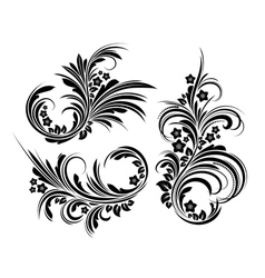 Set of elegant floral elements vector image vector image
