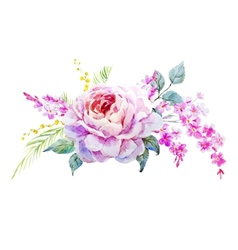 Nice roses vector