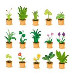 plant collection vector image