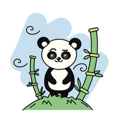 Cute panda bear animal in the mountain with bamboo vector