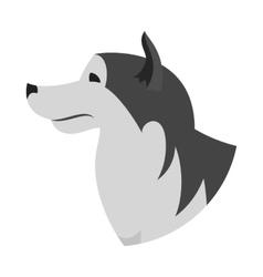 Dog head alaskan malamute vector