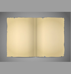 Blank cracked book pages vector image