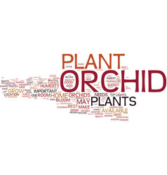 the orchid plant important aspects text vector image vector image