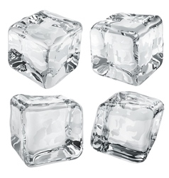 Opaque gray ice cubes vector