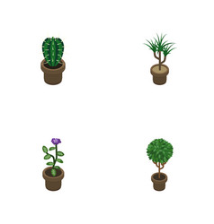 Isometric flower set of houseplant flower tree vector
