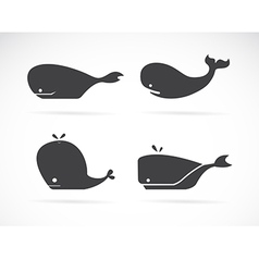 Set of whale icons vector image vector image