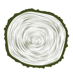 tree wood slice natural years line circle ring vector image