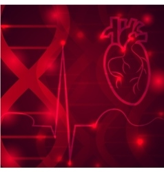 Heart pulse banner vector