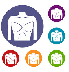 Female breast in a bra icons set vector