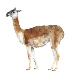 llama polygonal style vector image