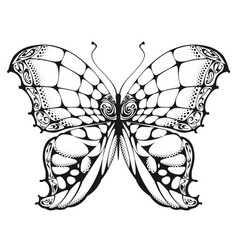 butterfly black and white drawing vector image vector image