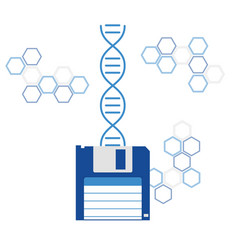 Dna sequencing genome information saving vector