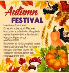 Autumn acorn leaf pumpkin festival poster vector
