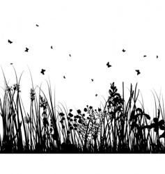 summer meadow vector image